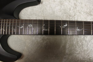 Schecter Diamond Series Damien FR 2010
